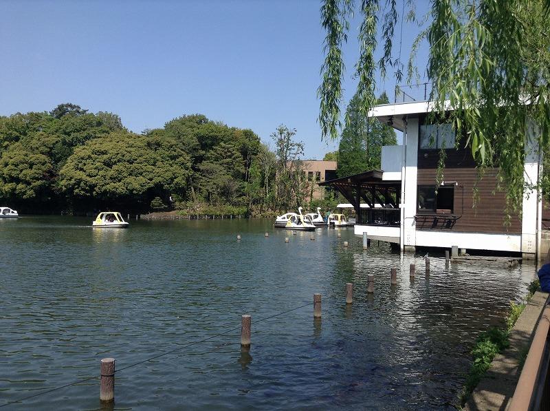 senzokuike-park-0389