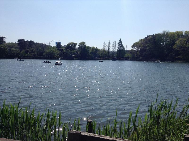 senzokuike-park-0488