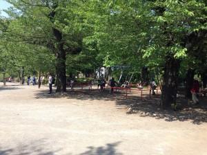 senzokuike-park-0499