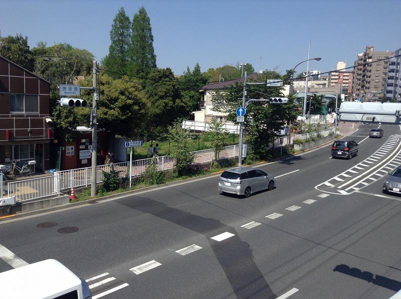 senzokuike-park-0543