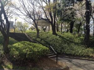 shinjyuku-shinryoku-15