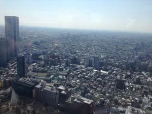 tokyo-tenboudai_9600