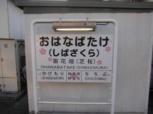 150505-6-chichibu-nagatoro-1267