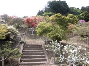 150505-6-chichibu-nagatoro-1691