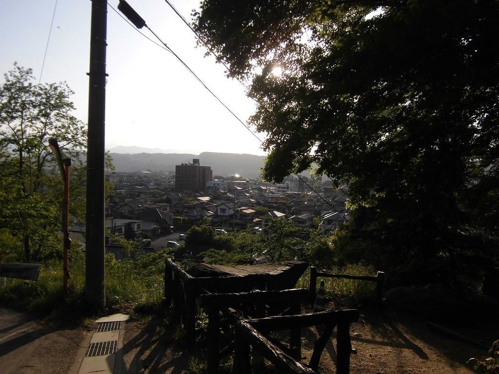 150505hitsujiyama-shibazakura-1226