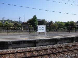 2015-5-2-ashikaga-flowerpark-0712
