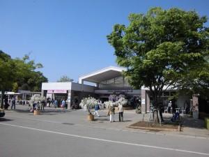 2015-5-2-ashikaga-flowerpark-0759