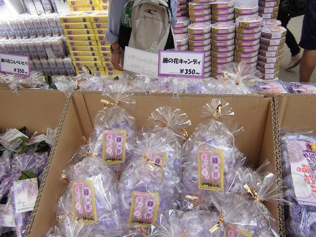 2015-5-2-ashikaga-flowerpark-0770