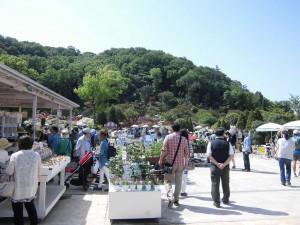 2015-5-2-ashikaga-flowerpark-0861