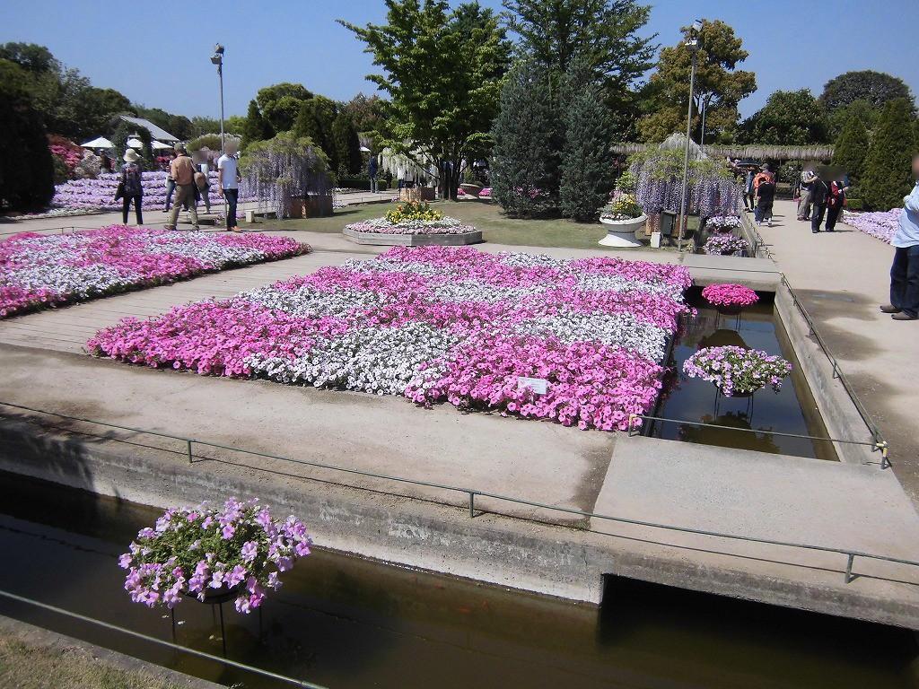 2015-5-2-ashikaga-flowerpark-0868