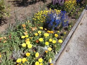 2015-5-2-ashikaga-flowerpark-0914