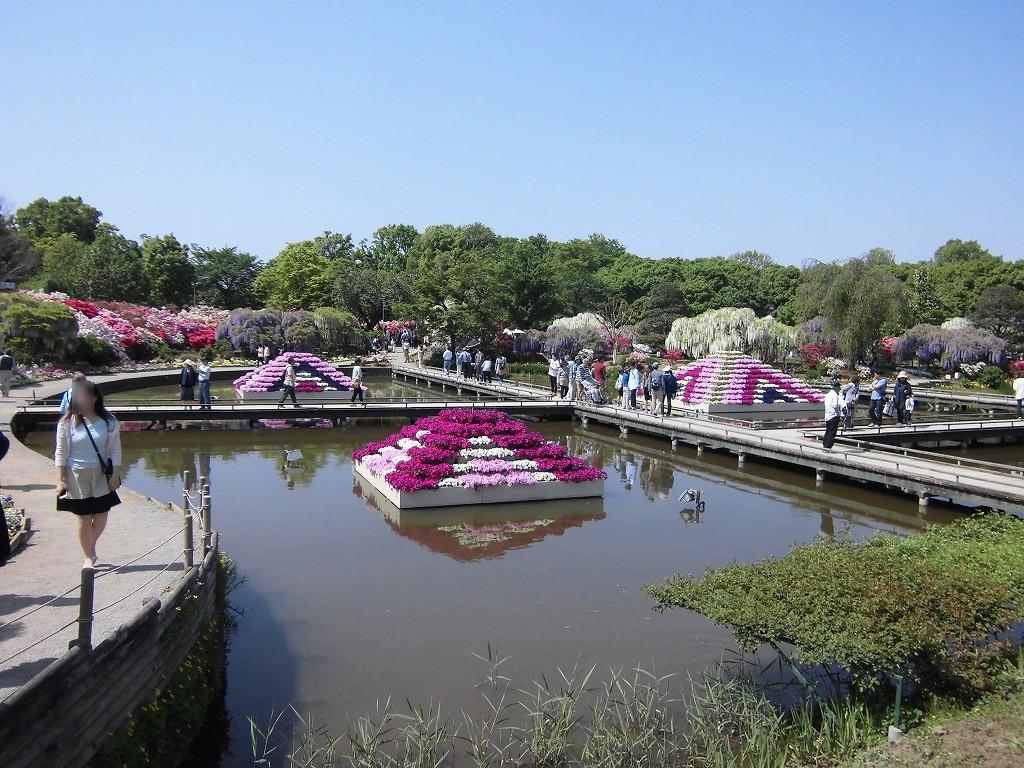 2015-5-2-ashikaga-flowerpark-0968
