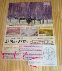 2015-5-2-ashikaga-flowerpark-1-2