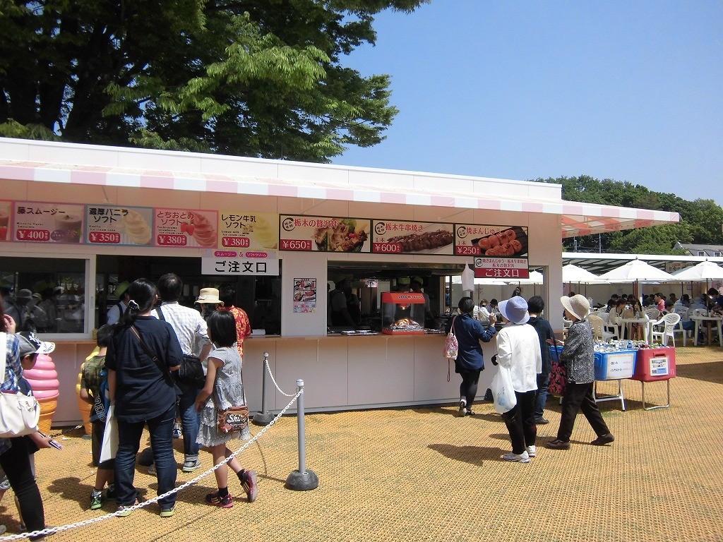 2015-5-2-ashikaga-flowerpark-1036
