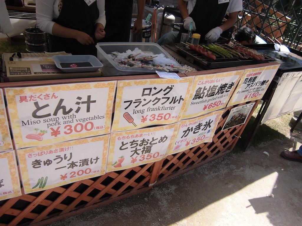 2015-5-2-ashikaga-flowerpark-1050