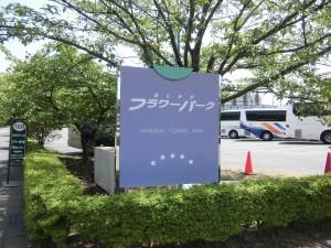 2015-5-2-ashikaga-flowerpark-1064