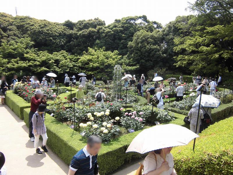 kyu-furukawa-teien-1841