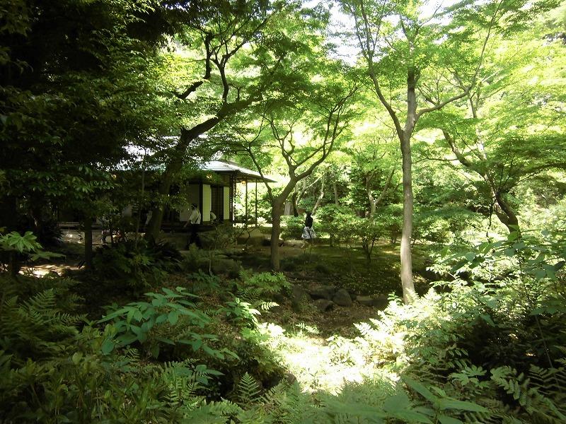 kyu-furukawa-teien-1883
