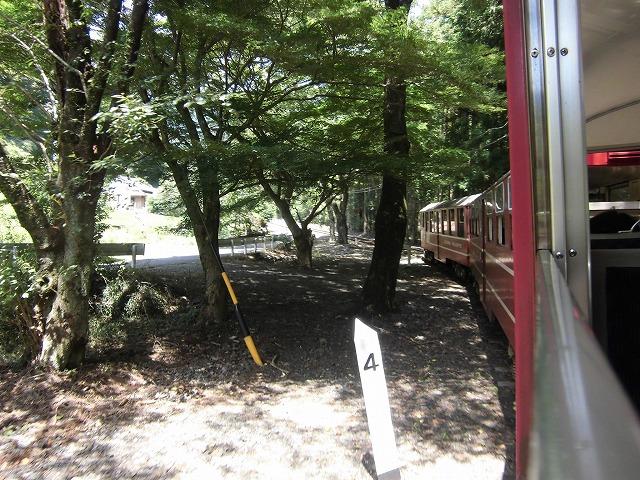 shizuoka-okuooi-kojyou-trip-2015-07-2924