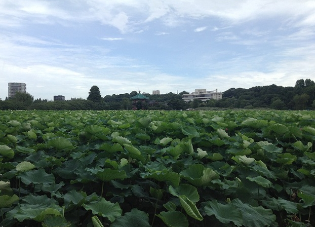ueno-onshi-park-2015-07-2880-2