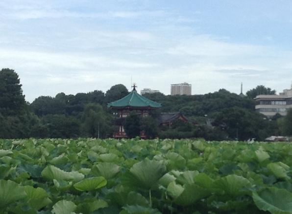 ueno-onshi-park-2015-07-2880-3