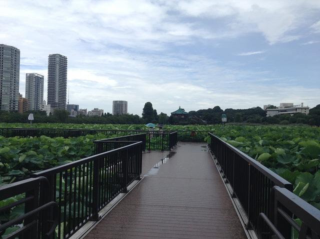 ueno-onshi-park-2015-07-2899