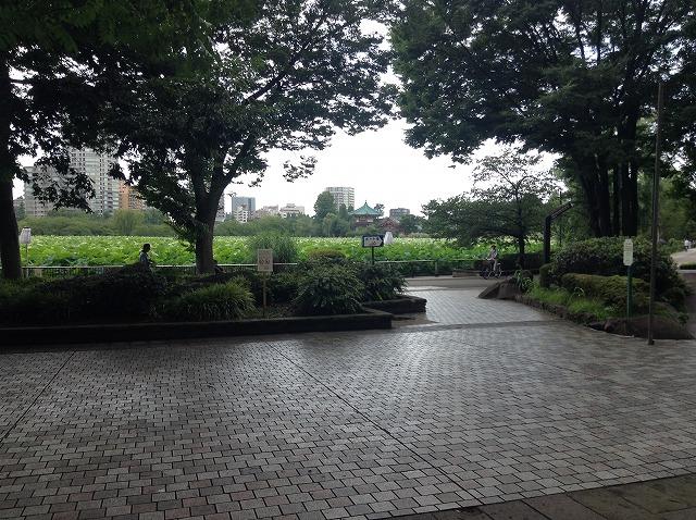 ueno-onshi-park-2015-07-2911