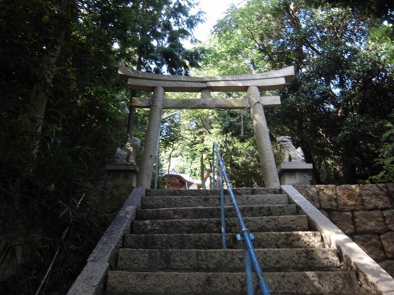 2015-08-setouchi-inujima-3795