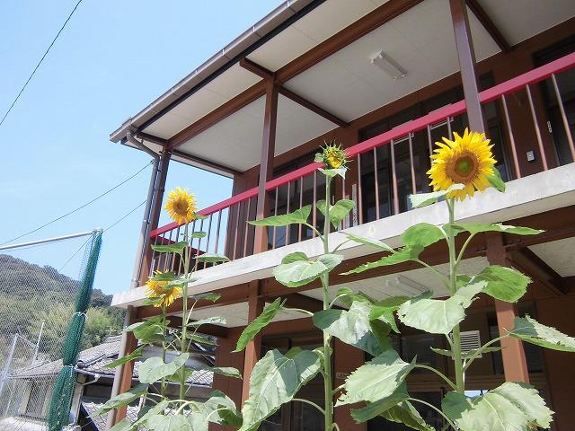 2015-08-kasaoka-manabeshima-4232
